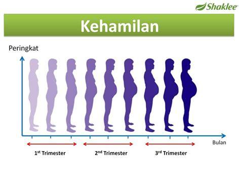 Masalah Kehamilan Trimester 1 2 3 Suplemen Ibu Hamil Farah Alina