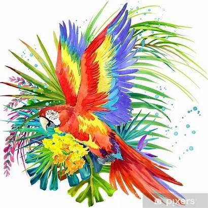 Tropical Bird Watercolor Parrot Exotic Jungle Nature