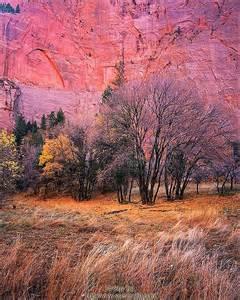 Utah Canyon Fall Colors
