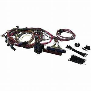 Ls1 Painless Wiring Kits : painless wiring 60508 1999 2002 gm ls1 engine harness ~ A.2002-acura-tl-radio.info Haus und Dekorationen