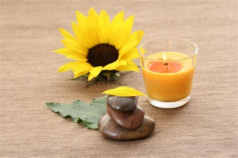 candela battesimale girasole e candela immagine stock immagine di candela