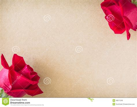 red rose flower  blank paper stock photo image
