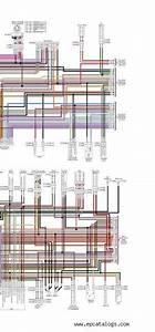 Download Harley Davidson 2019 Wiring Diagram Wall Chart