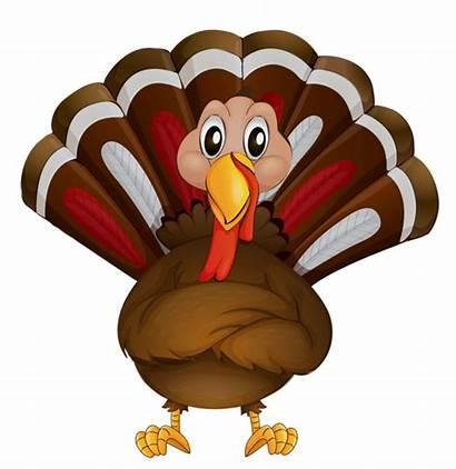 Thanksgiving Happy Themes Turkey Transparent Clipart Madonna