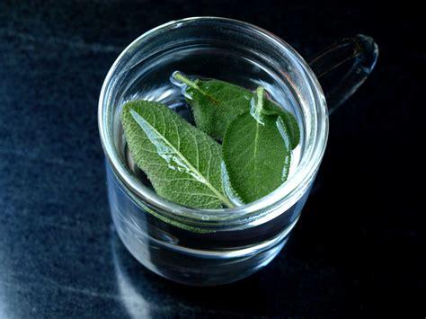 cuisiner avec la sauge une infusion de sauge et ça repart cookismo recettes saines faciles et inventives