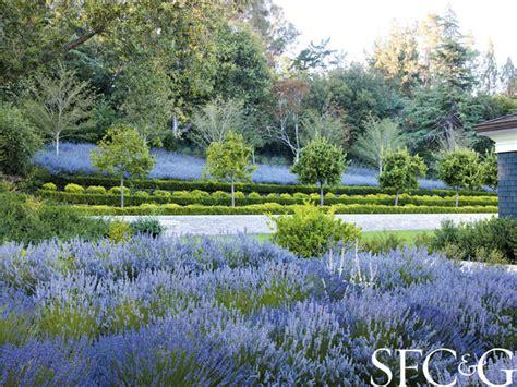 andrea cochran landscape andrea cochran coaxes the grounds of an atherton property into a sublime formal garden san