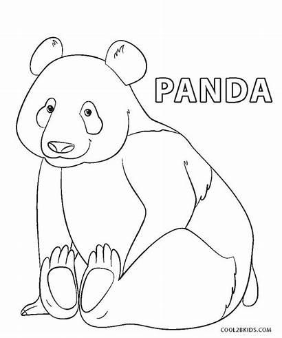 Panda Coloring Pages Printable Bear
