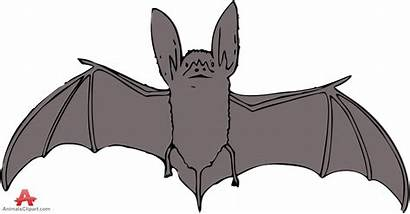 Wings Clipart Animals Bat Open Clipground