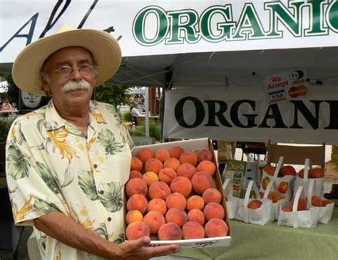 Organic Palisade Peaches Colorado
