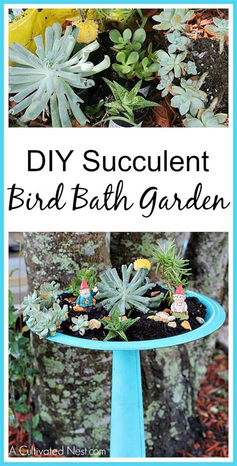 easy   bird bath succulent garden gardens bird