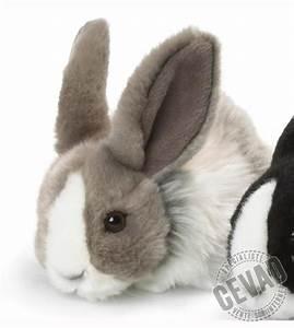 Lapin En Peluche : peluche lapin couch 18 cm gris et blanc chez doudou ~ Teatrodelosmanantiales.com Idées de Décoration