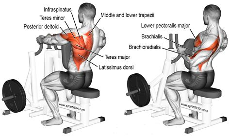 If we put enough mechanical tension on our muscles, they will grow. Back Workout 10 Best Exercises - II - Fit INDIA - A sprint ...