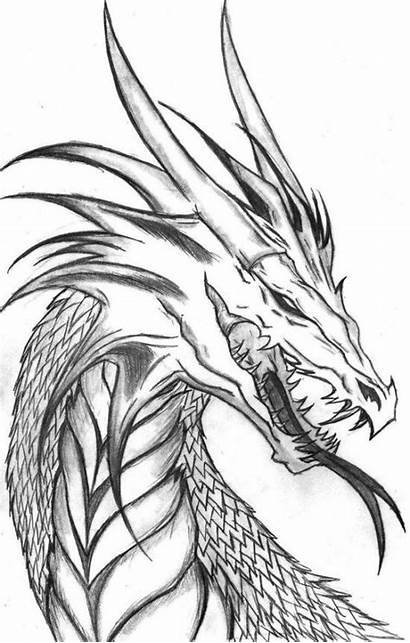 Dragon Coloring Pages Printable Drawings Cool Drawing