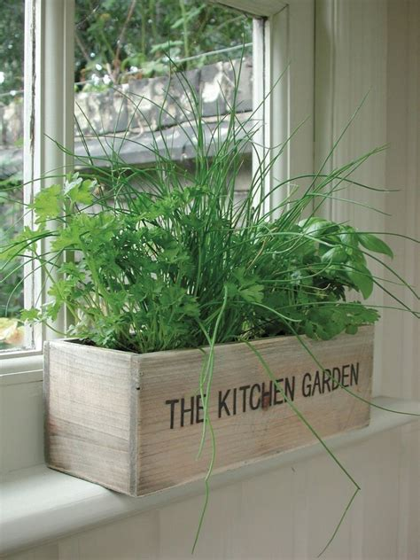 Growing Herbs In Kitchen Window by Unwins Herb Kitchen Garden Kit Planter Pot Seeds Flower