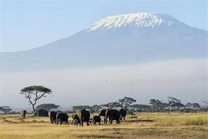 Kilimanjaro Mount Africa Tanzania Mountain Highest Mountains