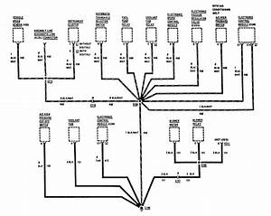 Buick Century  1987  - Wiring Diagrams - Ground Distribution