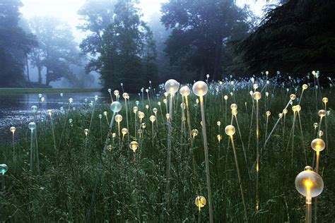 munro s artful light to illuminate atlanta botanical