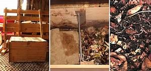 App Selber Bauen : wurmkiste selber bauen einfach kompostieren ~ Avissmed.com Haus und Dekorationen