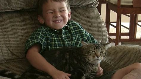 Good Kitty These 6 'hero Cats' Saved The Humans They