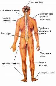 Лечение медью при остеохондрозе