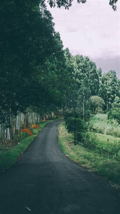 Iphone Nature Road Wallpapers Trees Country Narrow