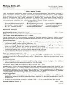 resume format for accountant documents resume sle 18 cfo finance executive resume career resumes