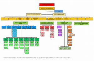 Institute U0026 39 S Organizational Chart