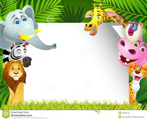 funny animals cartoon  wide wallpaper funnypictureorg