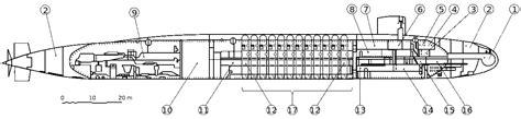 skipjack wiring diagram shark diagram wiring diagram