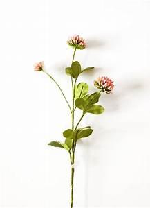 Deutsche Kunstblume Sebnitz : die deutsche kunstblume sebnitz z hlt zu den wenigen manufakturen weltweit in things ~ Eleganceandgraceweddings.com Haus und Dekorationen