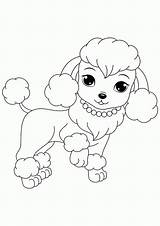 Coloring Pages Poodles Poodle Puppies Printable Dogs Popular sketch template