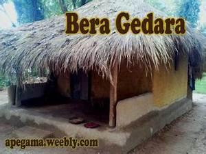 Redi Gedara Authentic Sri Lankan VillageApe Gama