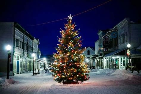 christmas trees in northern mi here are the top 9 towns in michigan
