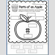 116 Best Ideas About Apples Theme On Pinterest Math