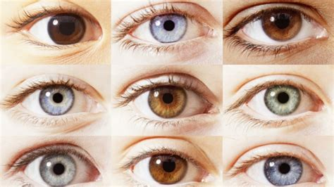 Colore Degli Occhi Diversi by 1001 Idee Significato Colore Degli Occhi E Personalit 224