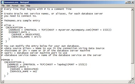 Setting Up An Oracle Odbc Driver And Data Source  Ten Six