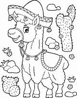 Coloring Llamas Adults Printable Jugofmilk Llama sketch template