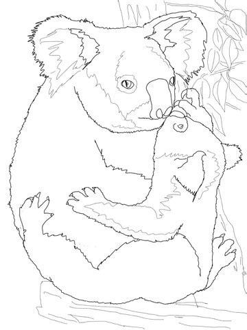 mother koala hugging  baby coloring page supercoloringcom