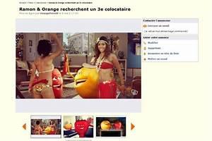 Le Bon Coin Oise Bricolage : oasis l 39 effet papayon bilan de la web s rie actus ~ Dailycaller-alerts.com Idées de Décoration