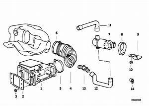 Original Parts For E36 318ti M42 Compact    Fuel