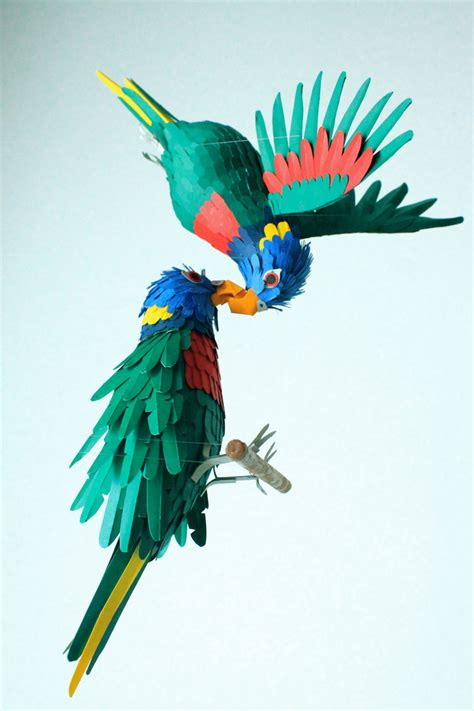 amazing colorful birds    paper photo gallery