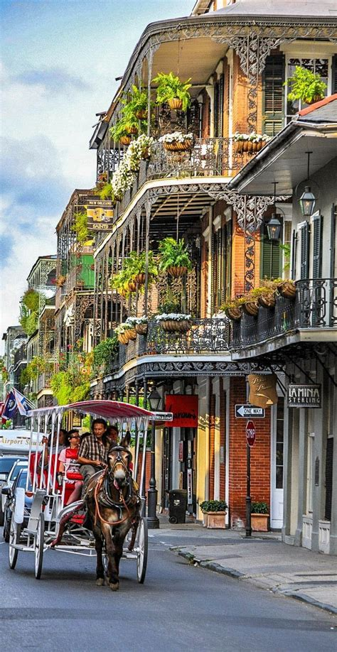 364 best images about new orleans on pinterest parks