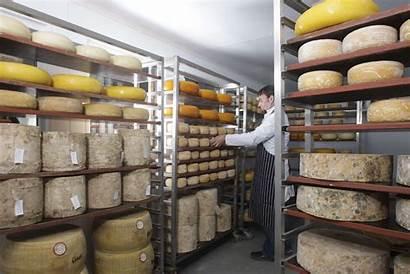 Wholesale Distribution Warehouse Cheese Farmhouse Operate Facility