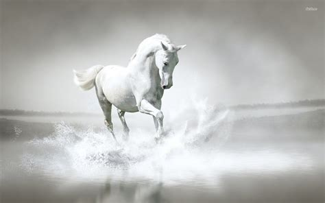 Horse Screensavers And Wallpaper (50+ Images