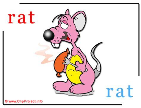 rat en anglais rat rat abc image dictionnaire anglais francais abc dessin picture image graphic clip
