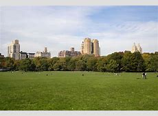 Central Park View WP Estate Responsive Real Estate Theme