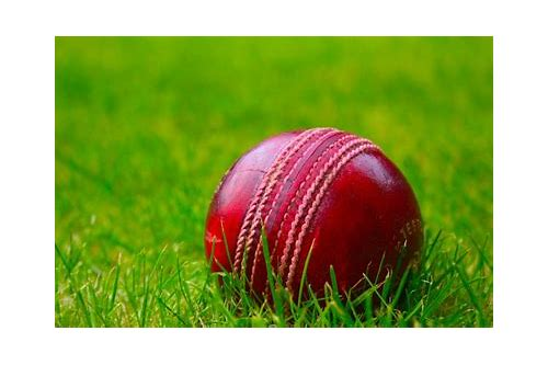 funny cricket videos download for mobile