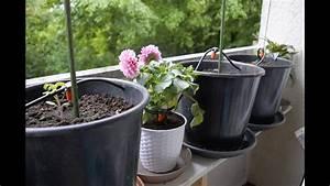 Bewässerungssystem Selber Bauen Balkon : gardena automatische bew sserung ohne hauswasseranschluss f r extra sicherheit youtube ~ A.2002-acura-tl-radio.info Haus und Dekorationen