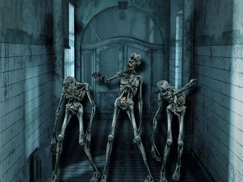 scary skeleton wallpaper  images