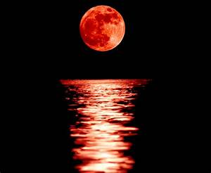 Four Blood Moons - What Nobody is Talking About! - Michael ...